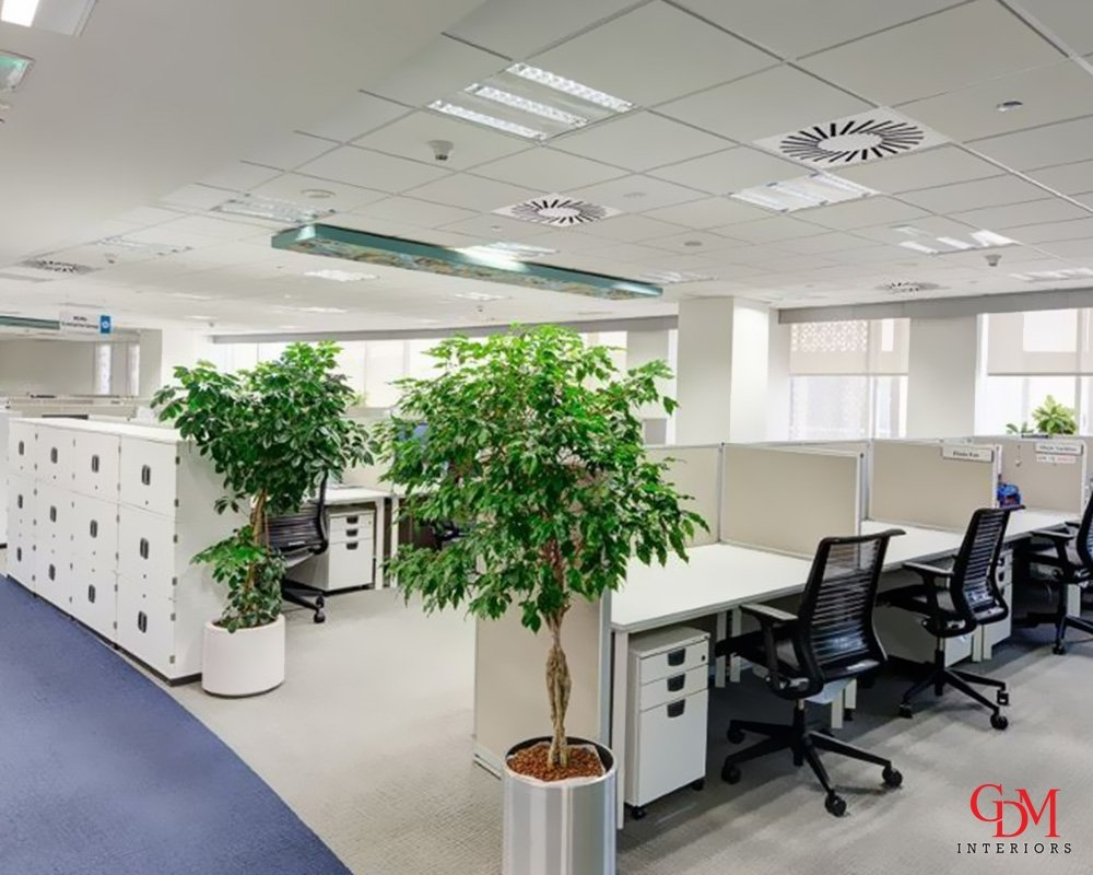 Commercial Fit out Solution